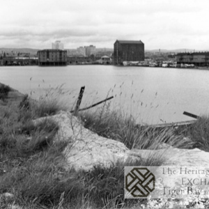 Photo of Bute East Dock