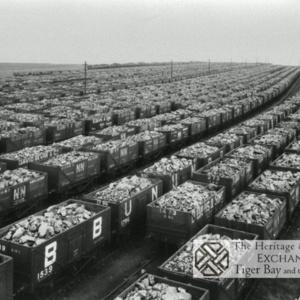 Photo of coal trucks